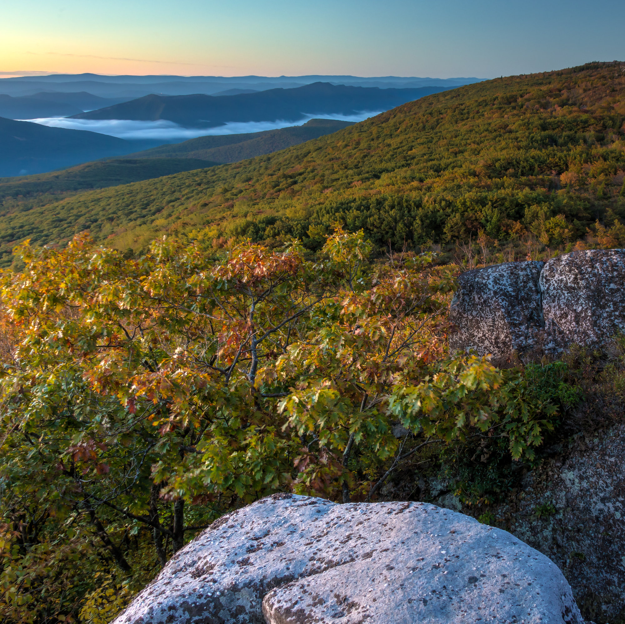 Backpacking West Virginia: The Best Day Hikes To Add To Your Bucket