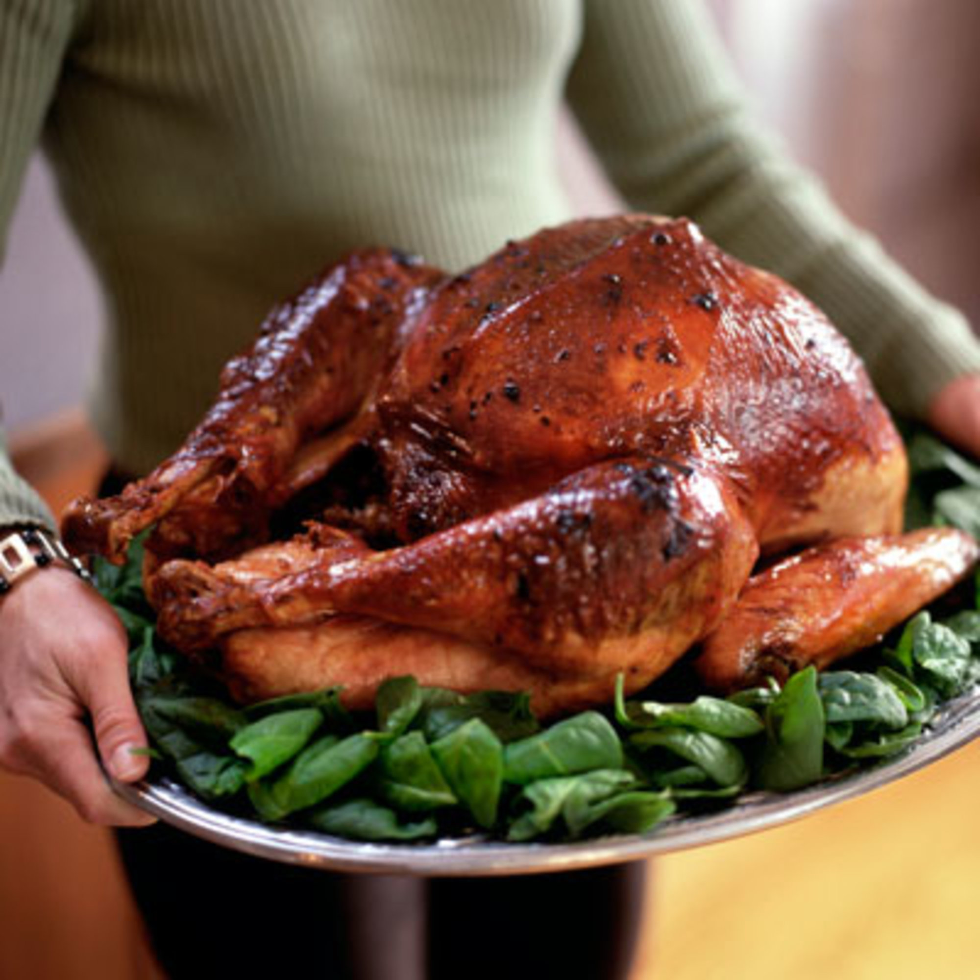 Easy turkey recipes in roaster