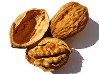 high-fat-food-good-walnuts-video