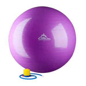 stability-ball-home-gym