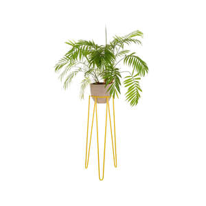 yellowhairpin-planter