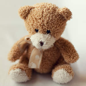 teddy-bear-childhood