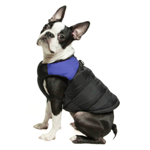 best-pet-gifts-dog-jacket