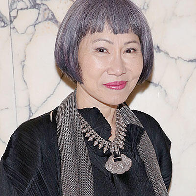 amy tan essay lyme disease