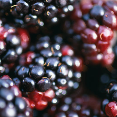 berries-phytonutrients-fight-cancer