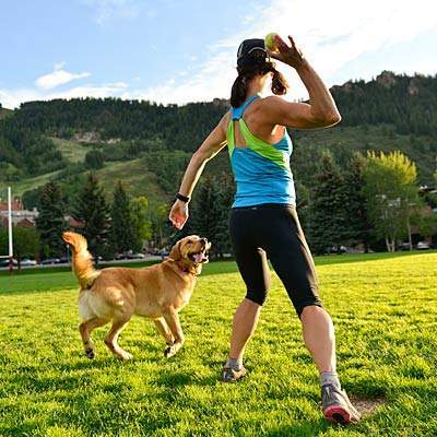 best-dog-for-active-person