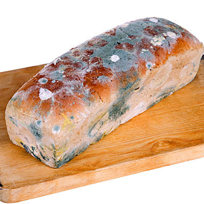 bread-loaf-mold