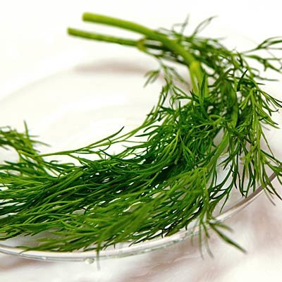 The Best Herbs To Grow And Eat At Home Health Com