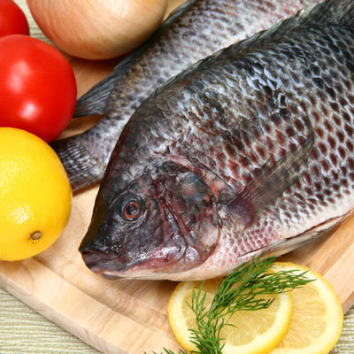 5 healthy fish recipes for Fishing channel on dish