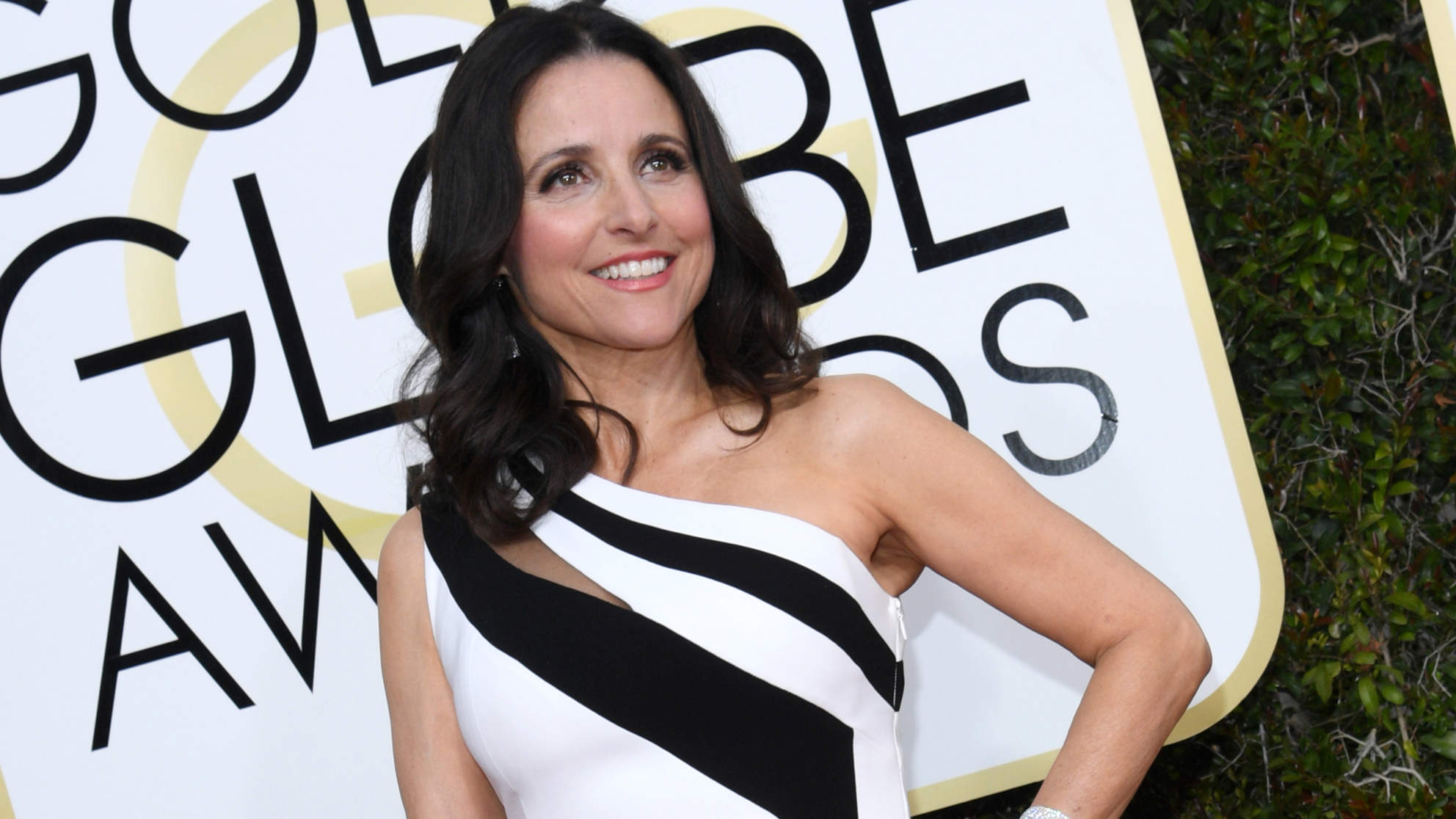 Julia Louis-Dreyfus Says Veep Cast and Crew Are a 'Huge Comfort and Joy' After Cancer Diagnosis