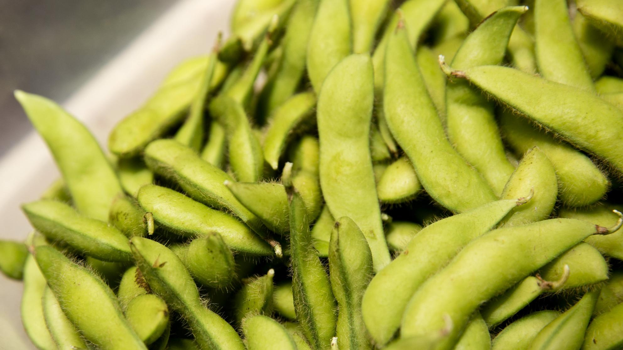 Edamame Is Being Recalled in 33 States Due to Listeria Concerns