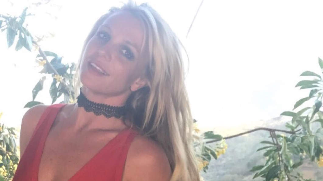 Britney Spears Shows Off Her Insane Abs in Teeny White Bikini Top