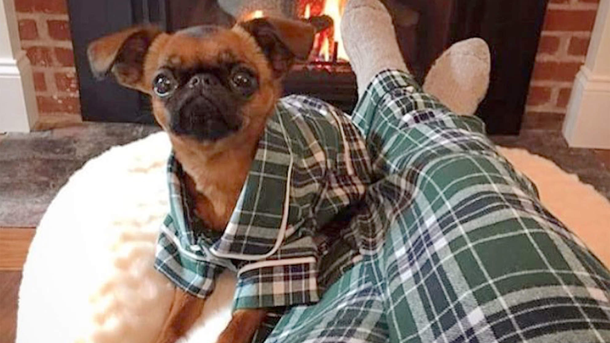 Stop What You Are Doing and Get Matching Pajamas with Your Dog
