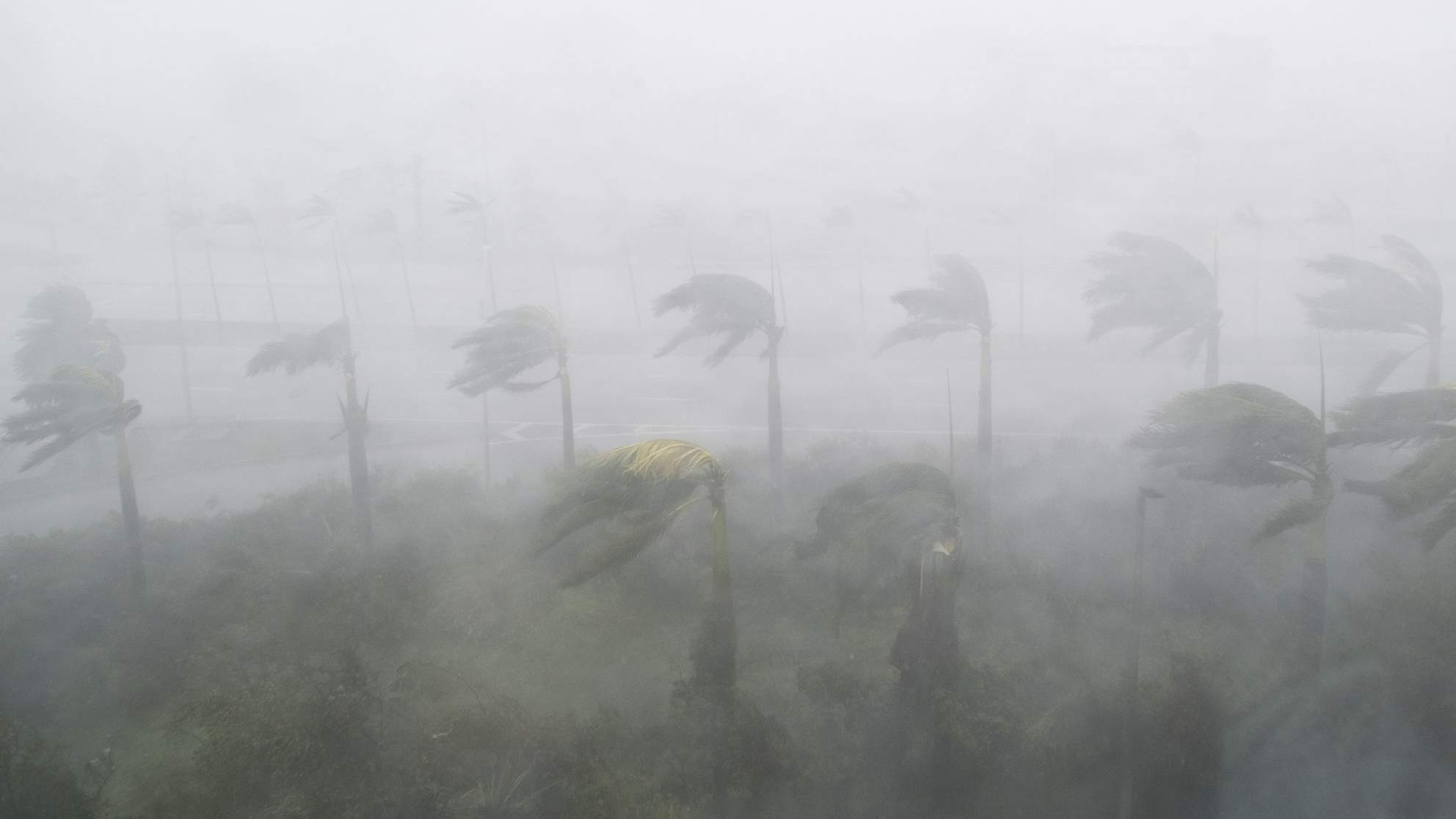 Heavy winds and rain from Hurricane Irma lash Miami on Sept. 10, 2017.