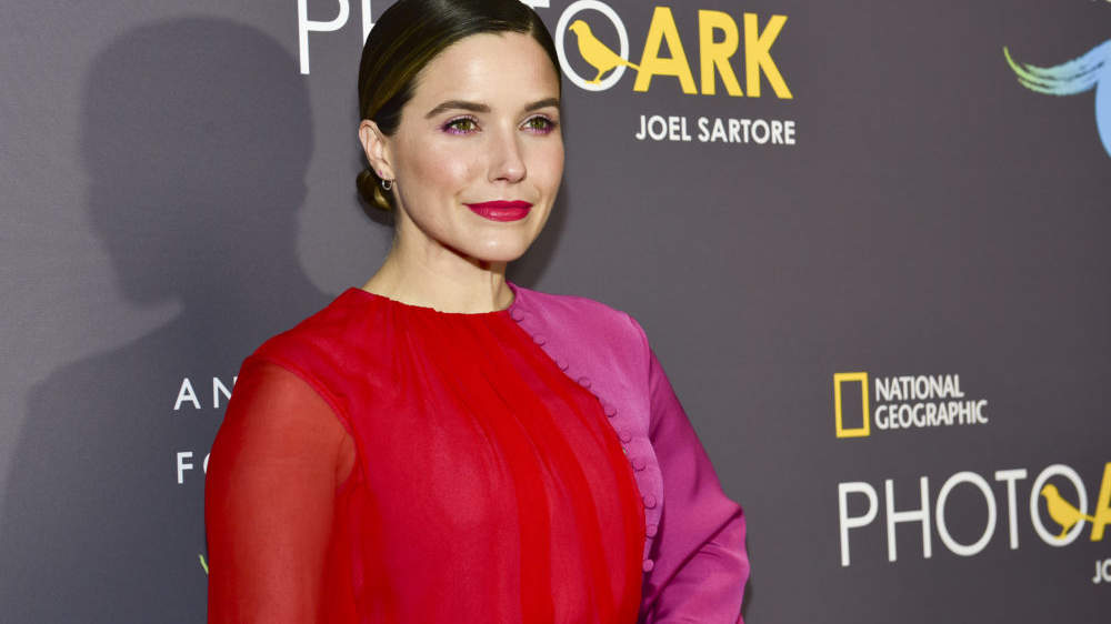 Sophia Bush Says She Was Assaulted in a Room Full of Men While on the Chicago P.D. Set—and No One Helped
