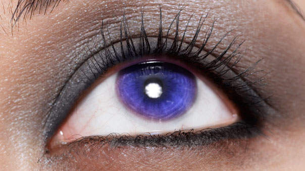 contacts-colored.jpg