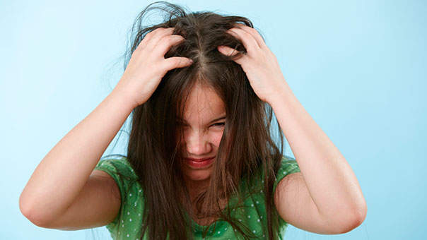 Head Lice in 25 States Are Now Resistant to Treatment