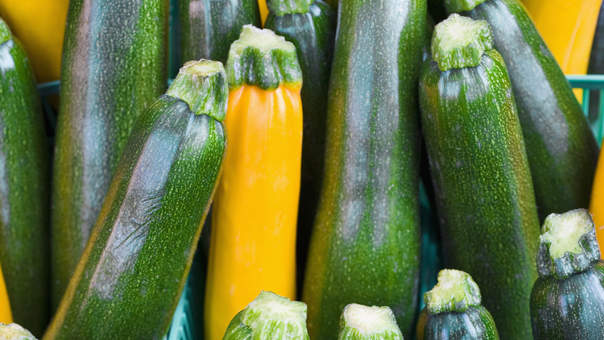 6 Things You Should Know About Zucchini