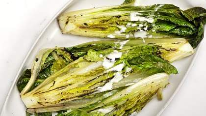 grilled-romaine-yogurt-dressing