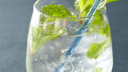 minted-gin-froths
