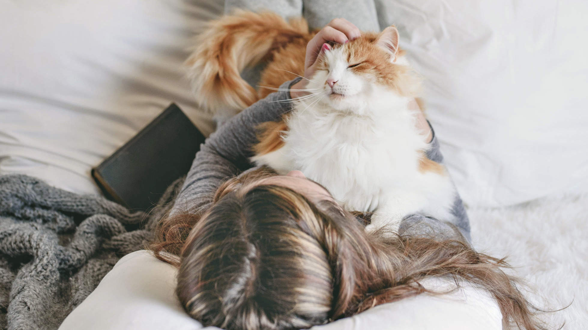 Do You Need an Emotional Support Animal? Here's What to Know