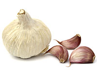 never-sick-garlic