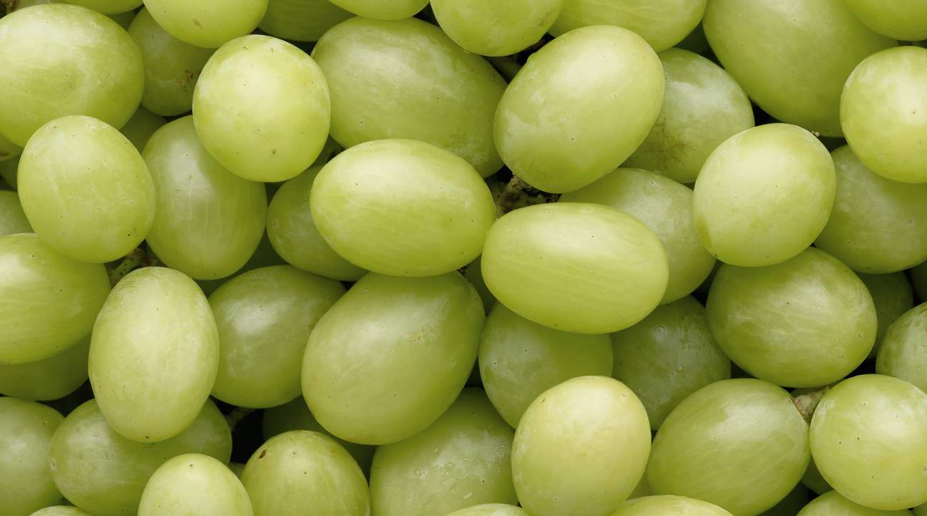 01-seek-healthier-grapes