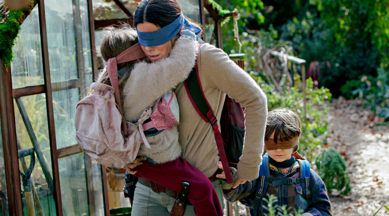 Don't Try This at Home! Netflix Urges Bird Box Fans Not to Attempt Viral Blindfold Challenge