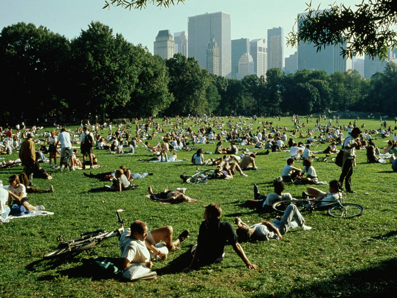 heat-dome-summer-relax-central-park-new-york