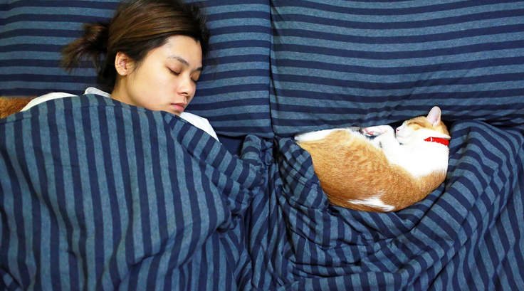 Mid Adult Woman With Cat Sleeping On Bed