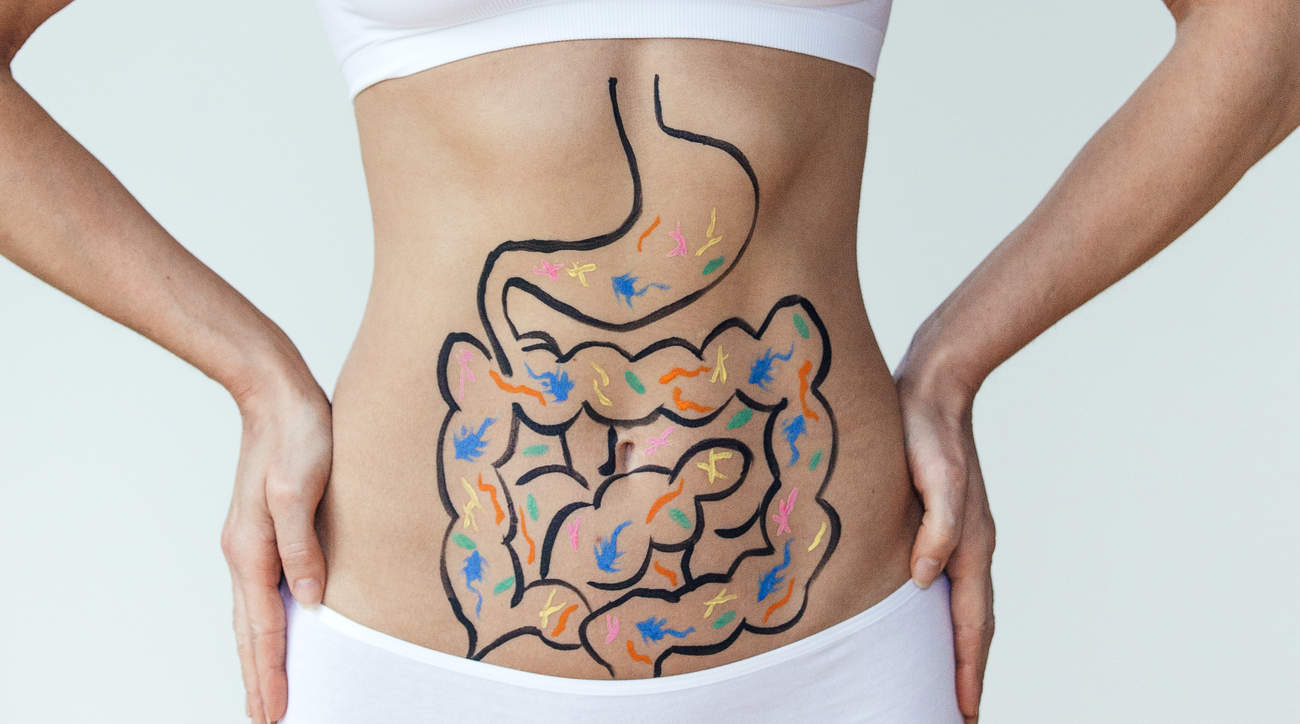 gut-digestion-stomach