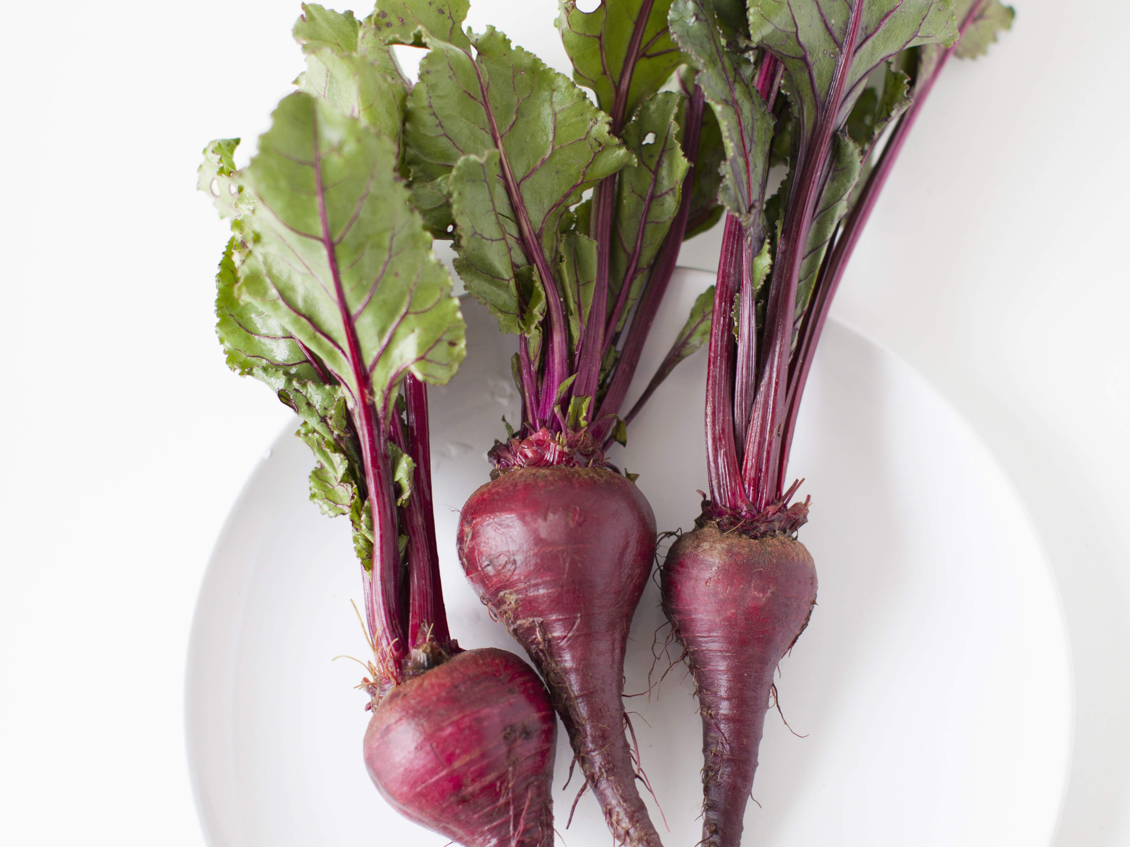 Beet: useful properties and secrets of use 70