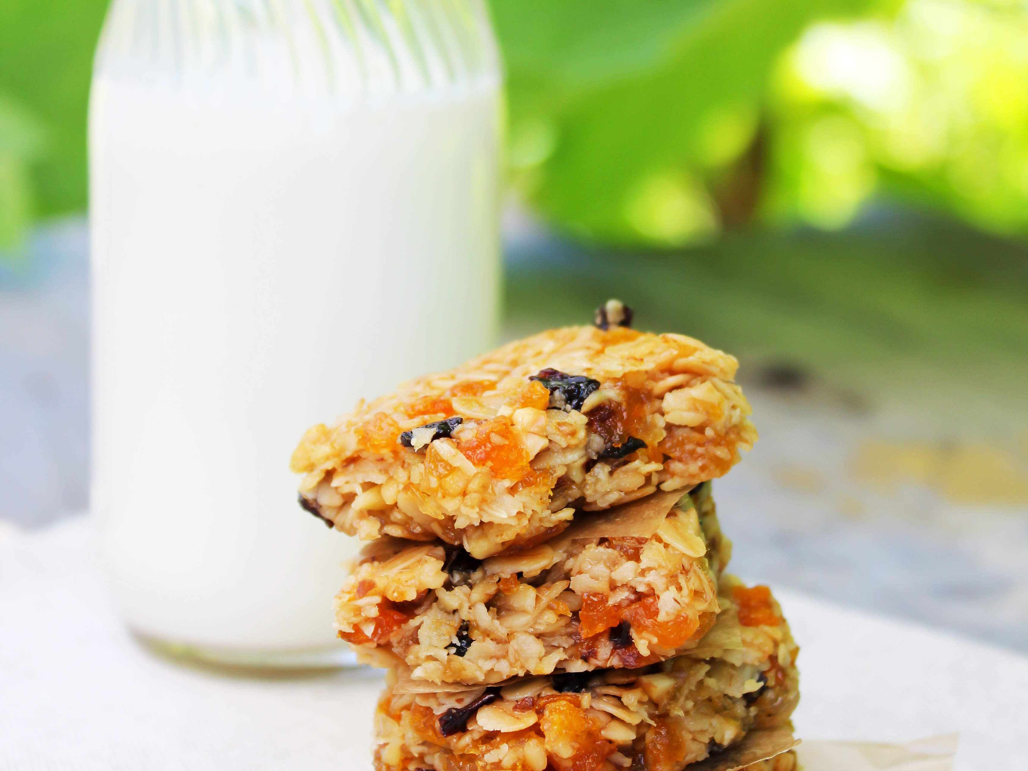 apricot-vanilla-cashew-bars-video