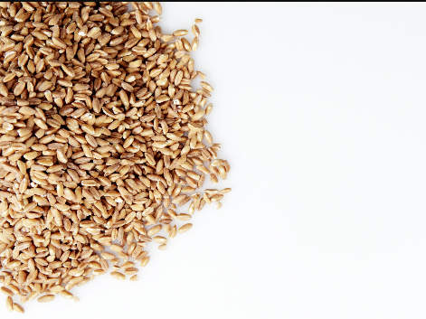 how-to-cook-farro-video