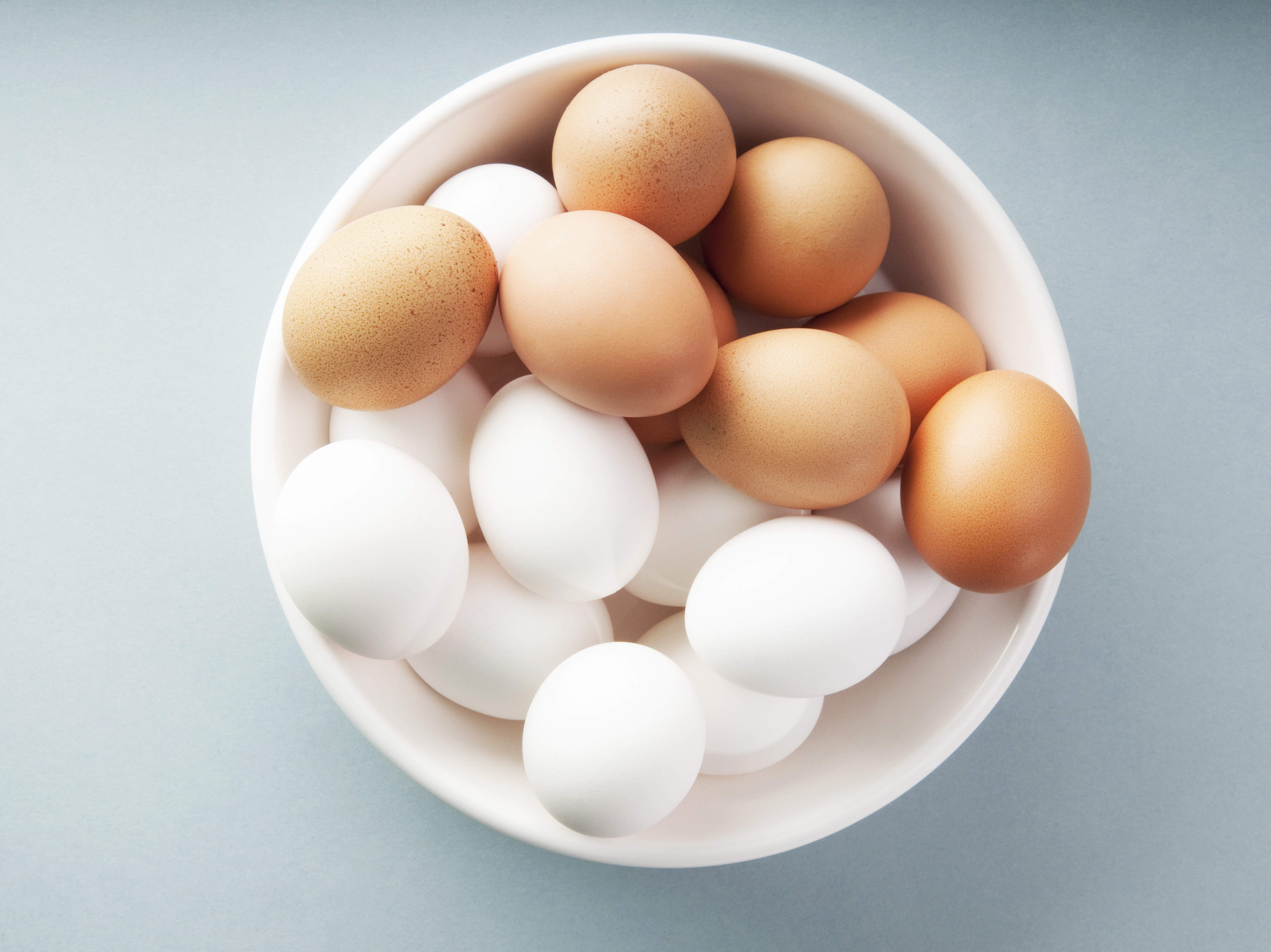 How are eggs useful? 86