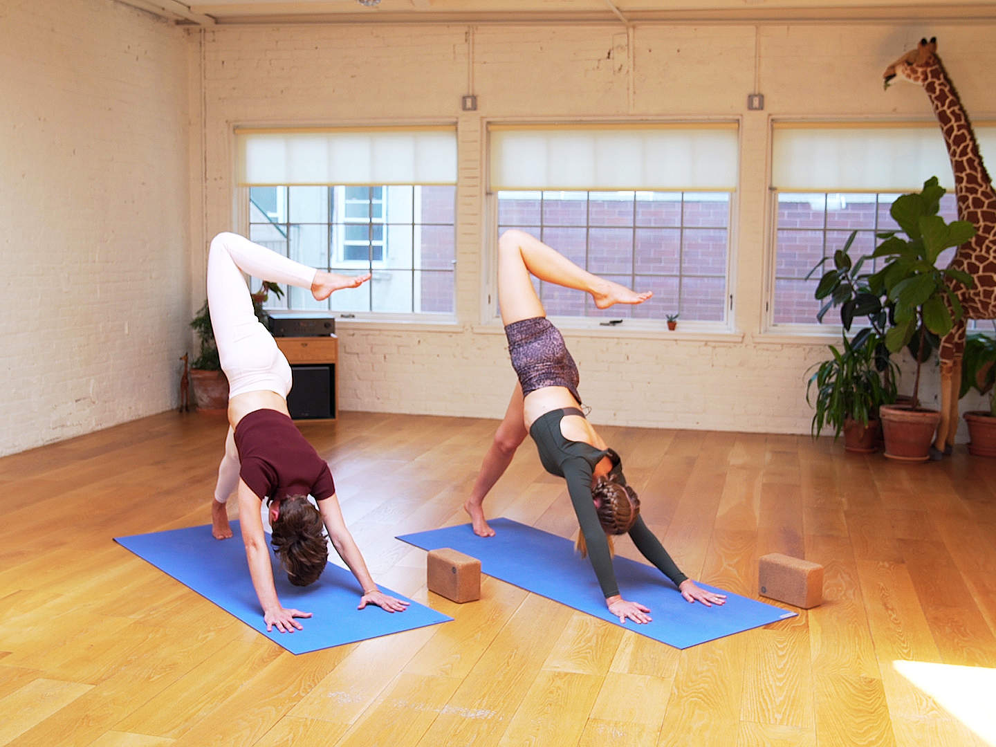 Wake Up Yoga Header-video
