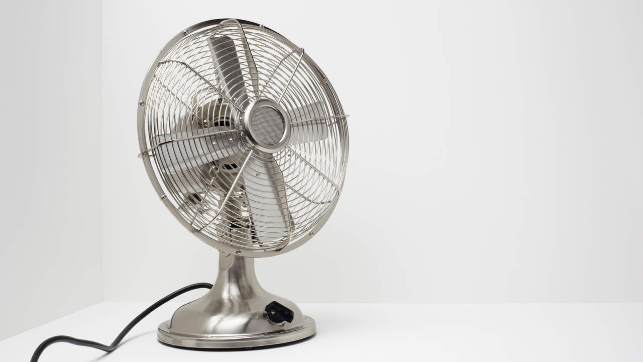 fan-allergy