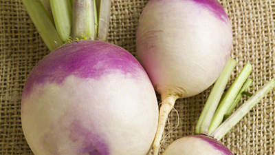 turnips-purple-top