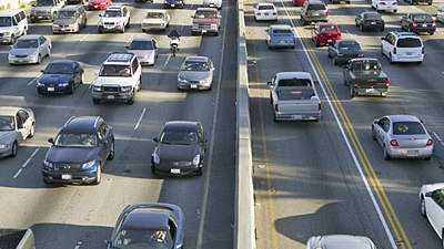 Traffic pollution may play a role