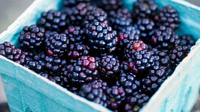 blackberries-superfruit