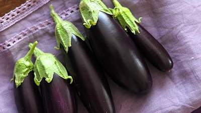 grilled-eggplant