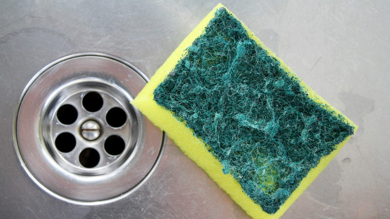Your kitchen sponge