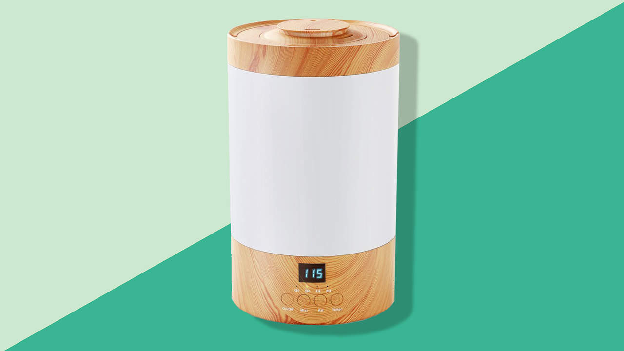 The Best Humidifier For Dry Skin And Stuffy Sinuses Health