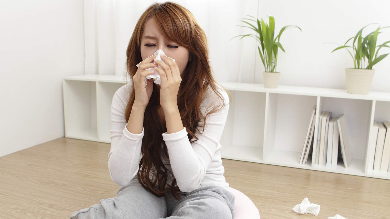 20 Allergy-Control Products to Sneeze-Proof Your Home
