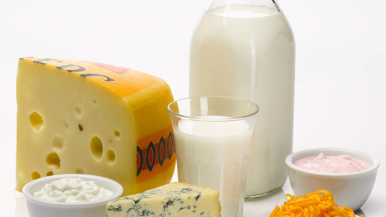 eat a dairy rich diet