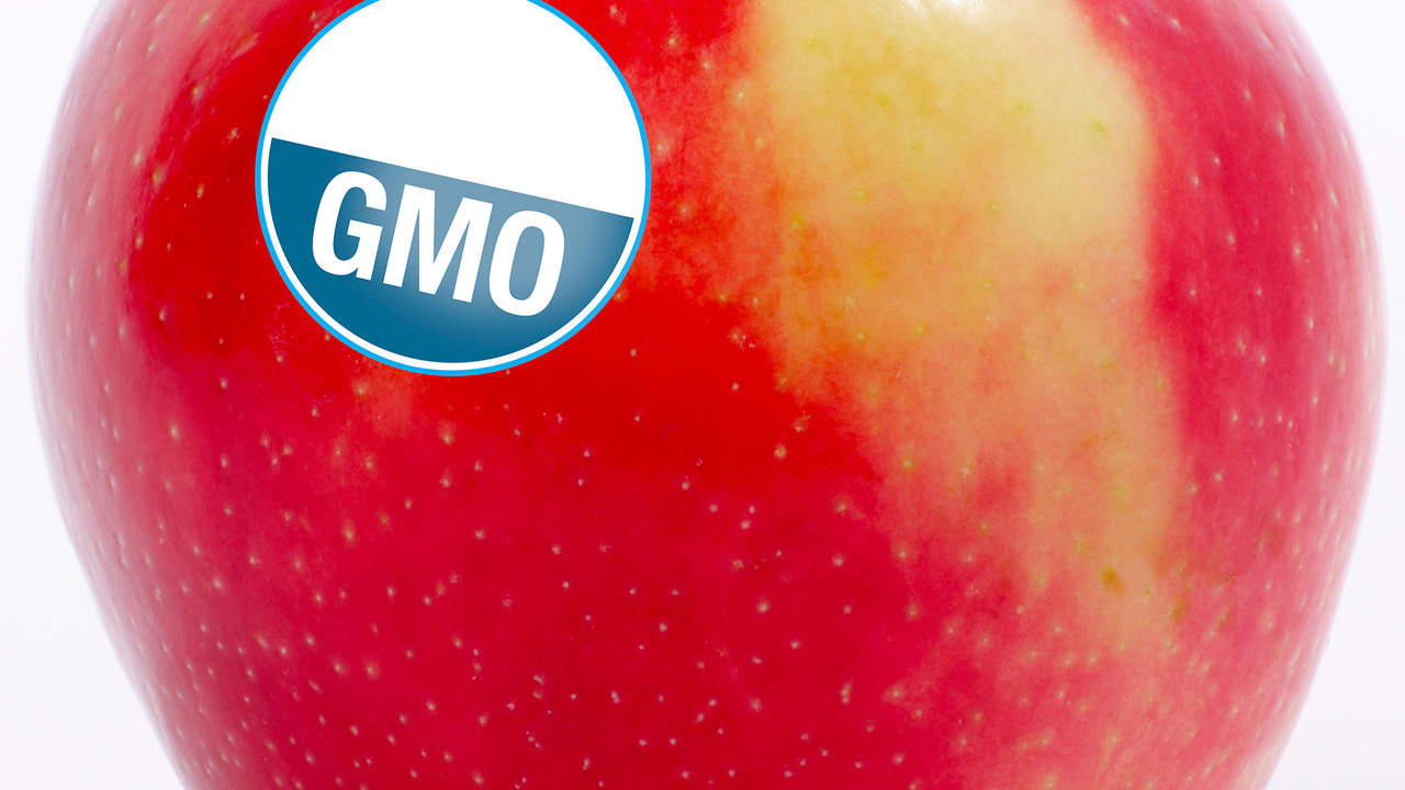 GMOs are safe, says the FDA