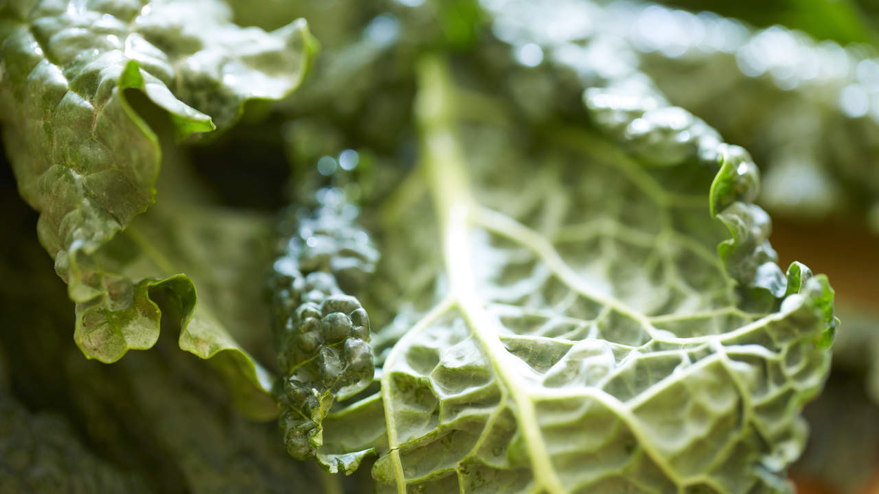 The swap: Salad greens for kale