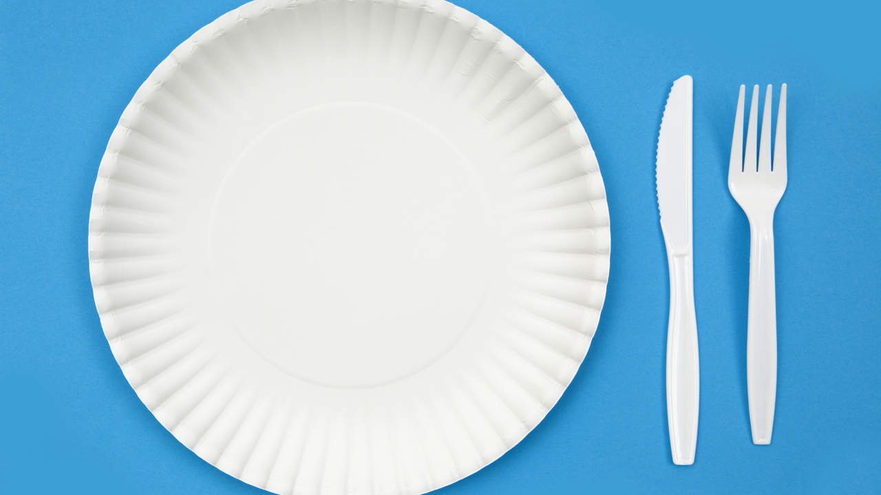 Paper plates and plastic utensils