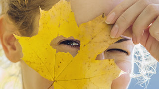 why-dry-eye-intro-dry-leaf