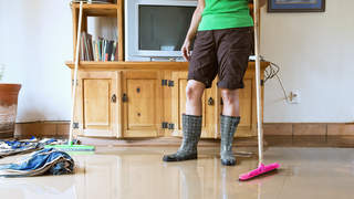 mold-flood-disaster-cleaning-hurricane